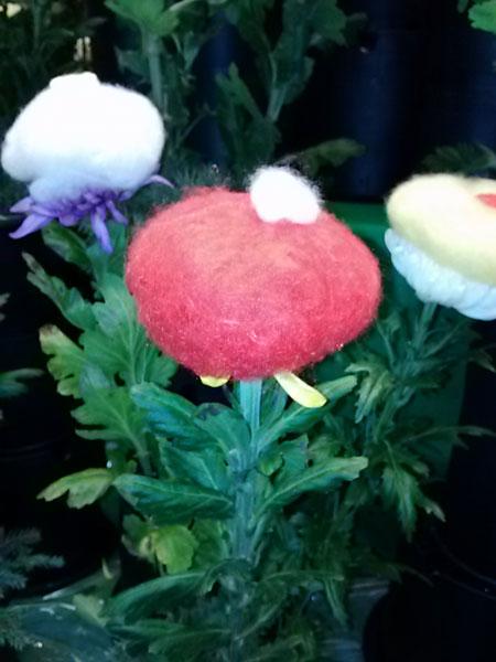 人形のまち岩槻 重陽の節句   菊の被綿